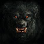 Grands et petits écrans #23 – loups-garous